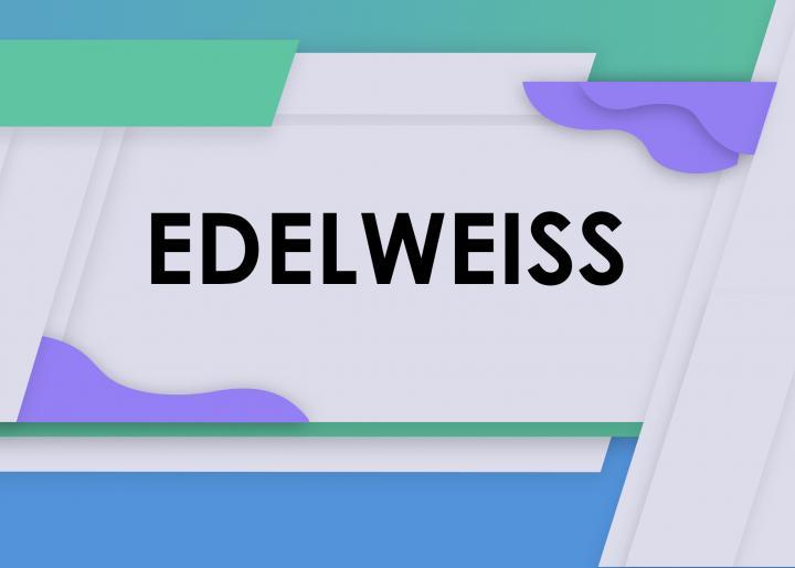 Обмен данными Эдельвейс - 1С. #1